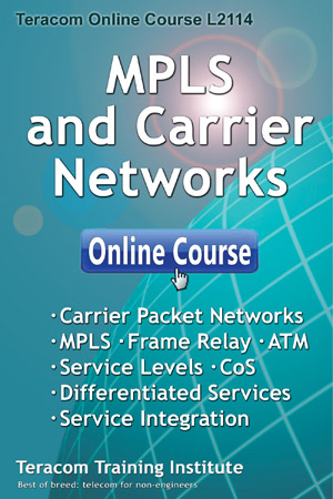 MPLS and Carrier Networks
