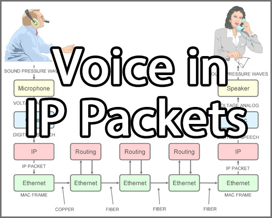 Course 2221 Lesson 3 Voice in IP Packets
