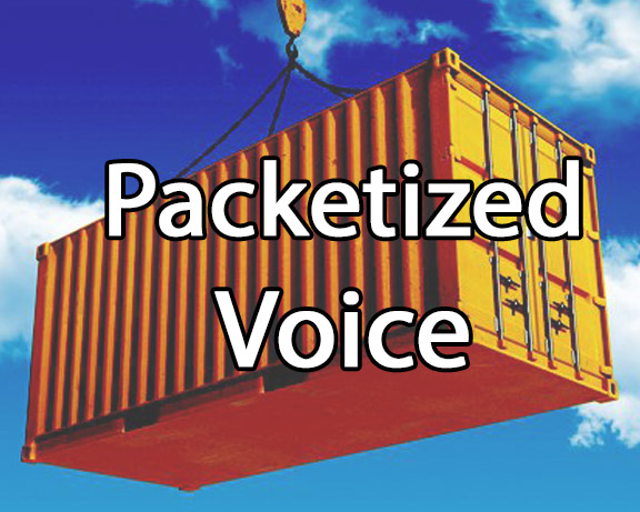Course 2224 Voice Packetization, Codecs and Voice Quality