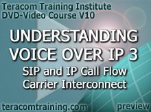 DVD Video Course V10 - Understanding Voice over IP 3: SIP and IP Call Flow . Carrier Interconnect . Megaco - preview