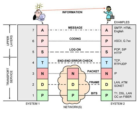 OSI Layers and Protocol Stacks